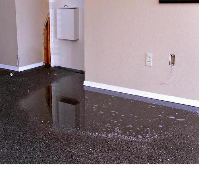 Water Damage Help I have a Flood in My Home