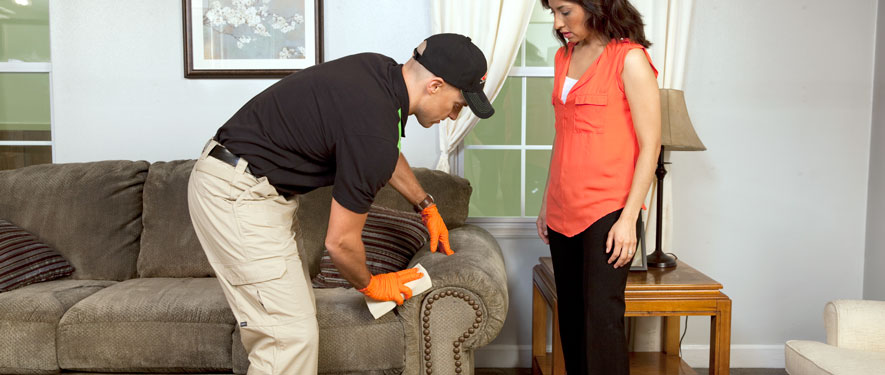 St. Augustine, FL carpet upholstery cleaning