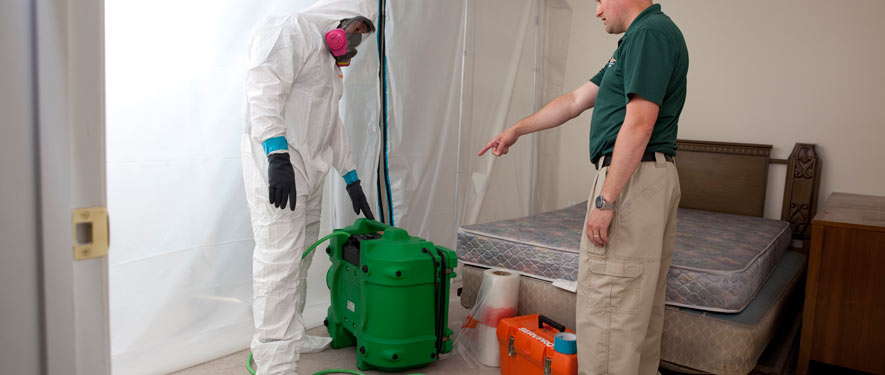 St. Augustine, FL mold removal process